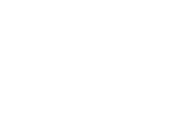 Bear Freight